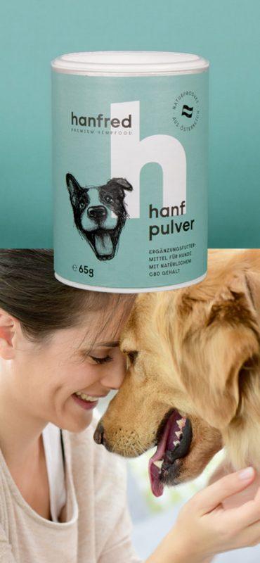 Hanfpulver Enstpannter Hund